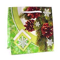 Подарочный пакет новогодний 11-12-1118 (16 х 16 х 7,6 см)