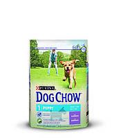 Puppy с ягненком для щенков (Дог Чау) Dog Chow (2.5 кг)