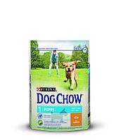 Puppy с курицей для щенков (Дог Чау) Dog Chow (14 кг)
