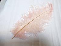 Перо страуса 25-30 см блідо-рожеве