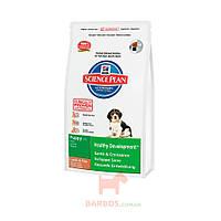 Science Plan Puppy Medium с ягненком и рисом для щенков (Хиллз) Hills Pet Nutrition (1 кг)