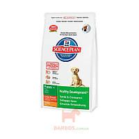 Science Plan Puppy Healthy Development Large Breed с курицей для щенков (Хиллз) Hills Pet Nutrition (2,5 кг)