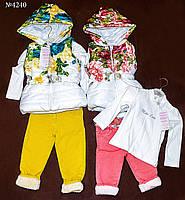 Комплект одежды для девочки Miss Lore (4240) 1-4 года
