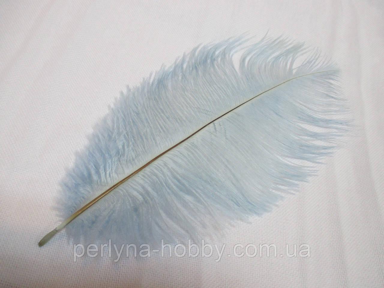 Перо страуса 22-25 см  голубе