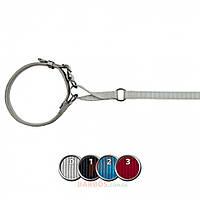 Поводок+ошейник Experience с кольцами для собак (Трикси) Trixie (XS-S 1,2 м, 36-42 см 15 мм)
