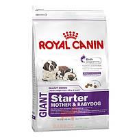 Giant Starter для щенков крупных пород и беременных собак (Роял Канин) Royal Canin (4 кг)
