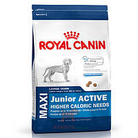 Maxi Junior Active для щенков крупных пород (Роял Канин) Royal Canin (4 кг)
