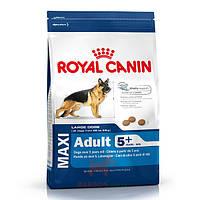 Maxi Adult 5+ для собак крупных пород (Роял Канин) Royal Canin (15 кг)