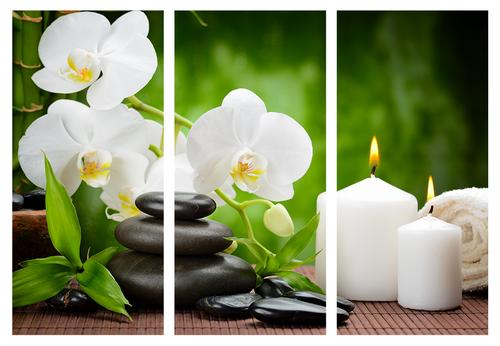 Картина модульная орхидея МD 011