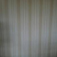 Аркадия 2 8523-01 ширина 1.06,обои горячий винил на флизелине,КФТБ Славянские шпалеры