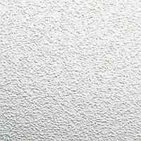 Плита подвесного потолка Oasis 600х600х12