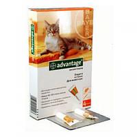 Адвантейдж 40 Bayer (Германия) капли от блох для котят и щенков до 4 кг (1 пип.х 0,4 мл)