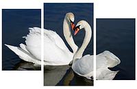 Картина модульная Лебеди МD 019