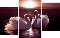 Картина модульная Лебеди