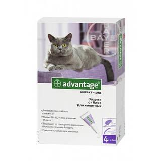 Адвантейдж 80 Bayer (Германия) средство от блох для котов и кошек от 4 кг (1 пип.х 0,8 мл)