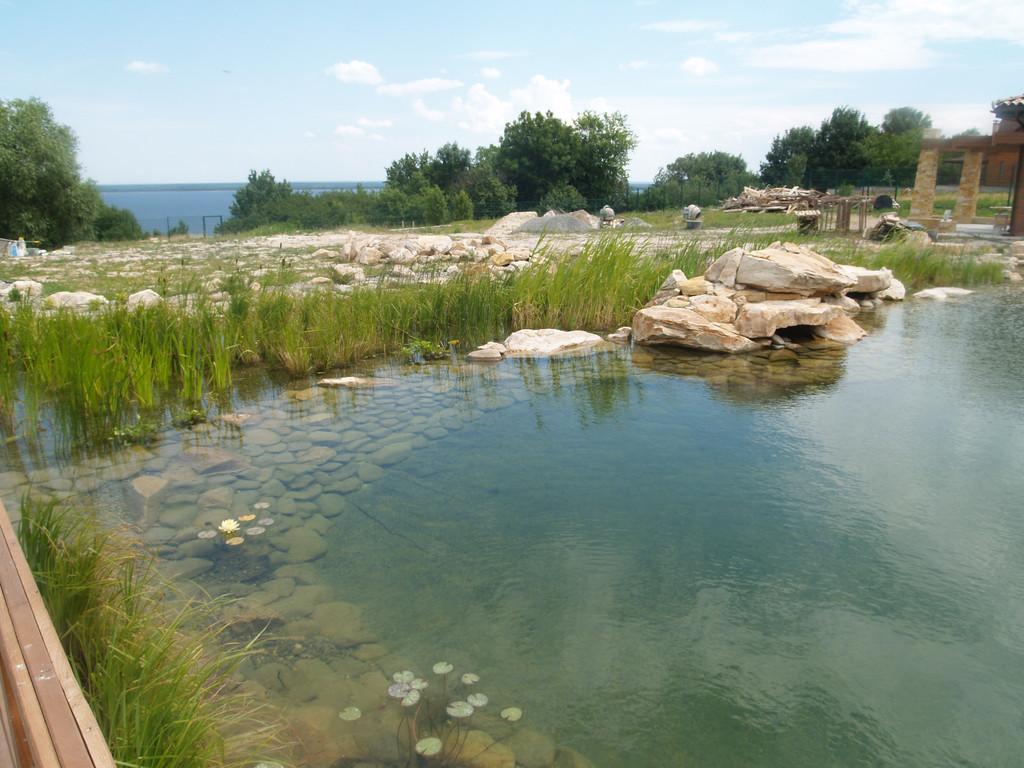 Резина в пруду обложена камнем на глубину около 1 метра