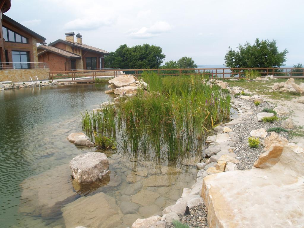 Зона регенерации (водные растения) должна занимать по отношению к плавательной части около 40%-50%