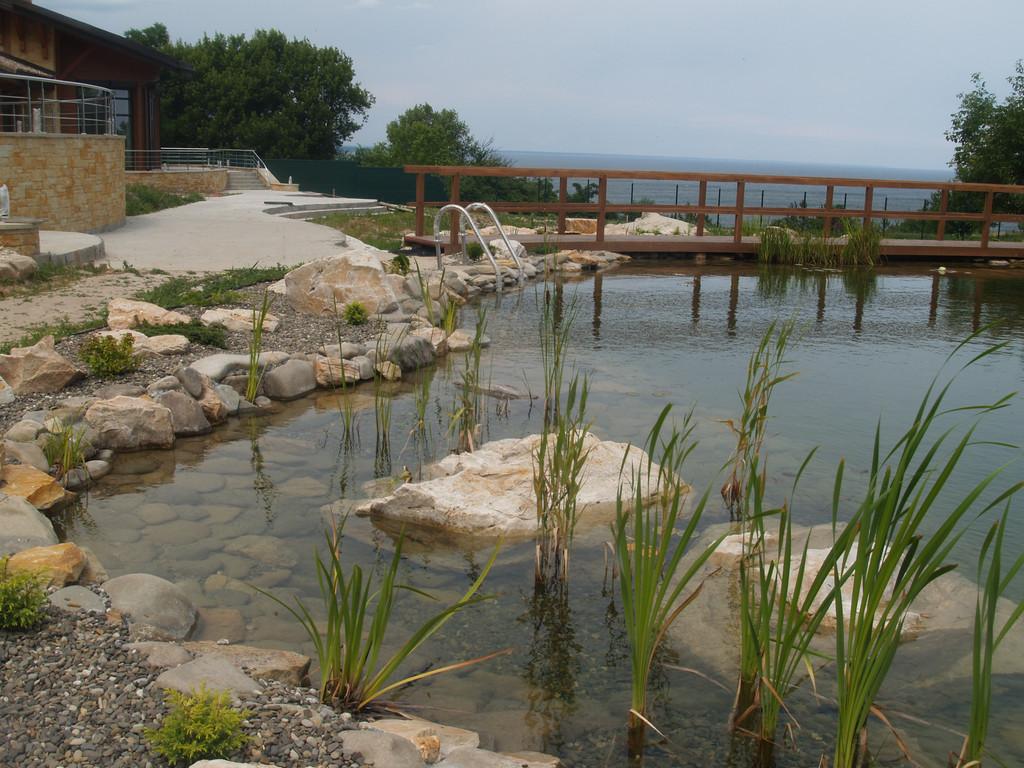 Строительство плавательного пруда 300м2