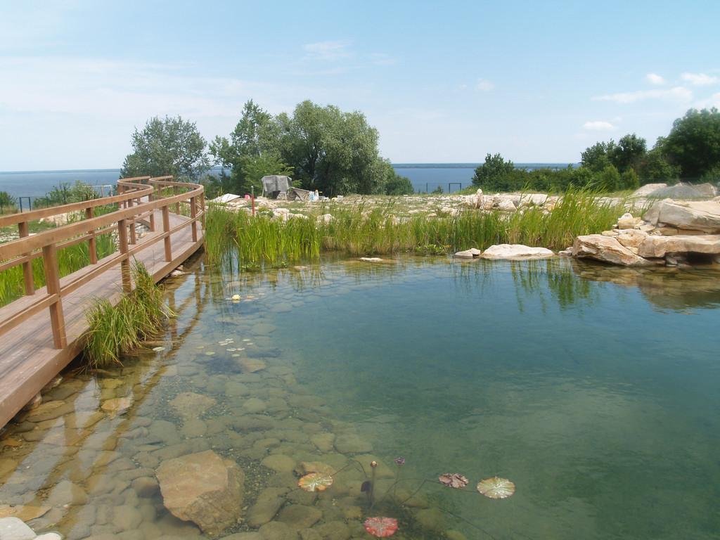 Мостик через водоём уместен только когда пруд достаточно большой, иначе мостик разрежет пополам и без того маленький пруд