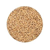Солод зерновой ячменный. Украинский. Malteurop 2017 год