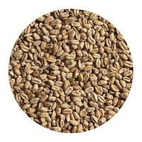 Солод пшеничный украинский. Malteurop. 1 кг
