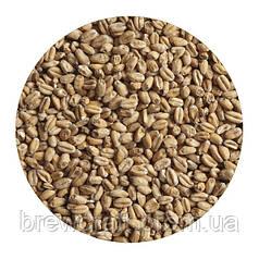 Солод пшеничный украинский. Malteurop. 1 кг - 2017 год