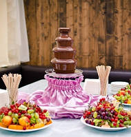 Аренда шоколадного фонтана и фондю