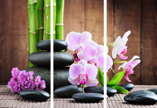 Картина модульная орхидея с камнями МD 029