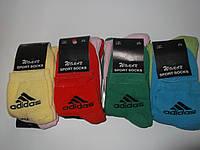 Махровые спортивные женские носки Adidas. Распродажа, Супер Цена!!!