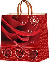 Пакеты для подарков на день Валентина Размер 24х24см