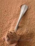 Кэроб нежареный. 50 грамм. Полезный натуральный заменитель шоколада и какао., фото 2