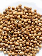 Кориандр семена отборные ЭКСТРА, 50 грамм