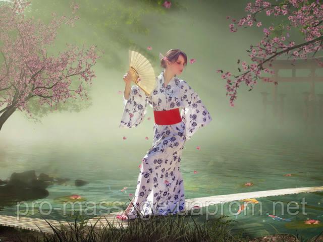 Японская диета (оригинал) диета японской клиники ЯЭКС