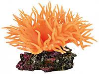 Декоративное растение для аквариума Anemone оранжевое, 8 см Trixie