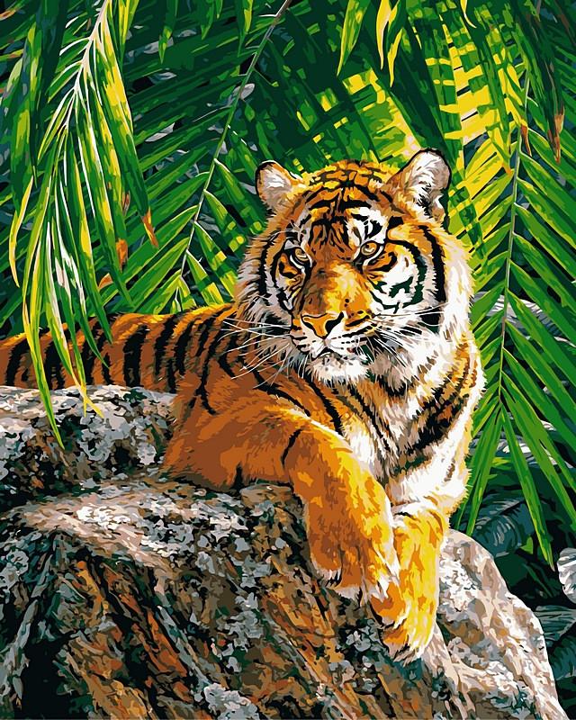 Картины по номерам 40×50 см. Суматранская тигрица Художник Страйблинг Дэвид