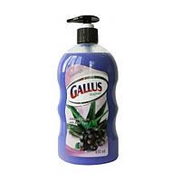 Жидкое мыло Gallus Johannisbeere mit Aloe Vera, 650 мл