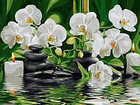Картины по номерам 40×50 см. Оазис наслаждения