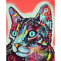 Картинки на чулки Cat [7 размеров в ассортименте]