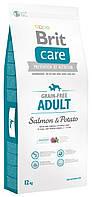 Беззерновой корм для взрослых собак Brit Care Adult Salmon & Potato