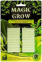 ,Удобрение в палочках Magic Grow для декоративно-лиственных растений, блистер 30 шт