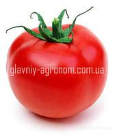 Семена томат Шейла Ф1