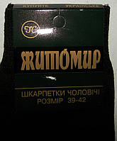 Носки  мужские  стрейч  Житомирские (Ф.А.Л.)