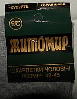 Носки  мужские    Житомирские  (Ж.Е.Н.)