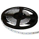 Светодиодная лента B-LED 5630-60 W белый, негерметичная, 5метров, фото 5