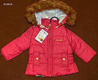 Куртка детская для девочек (16814)