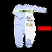 Человечек для новорожденного р. 68 с начесом ткань ФУТЕР 100% хлопок ТМ Алекс 3042 Голубой12