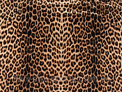 Стрейч-бархат гладкий CHRISANNE (Англия) леопардовый