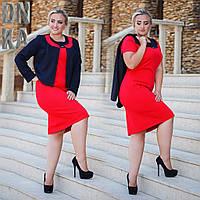 Женский костюм платье красное с пиджаком Батал