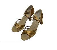 Обувь для танца LD2079-BG