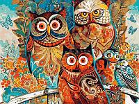 Картины по номерам 40×50 см. Мудрые совы, фото 1